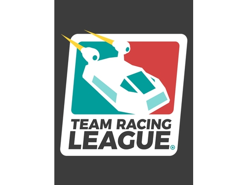 Gra PC Team Racing League wersja cyfrowa
