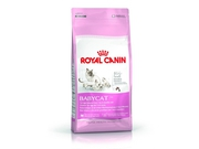Karma Royal Canin Mother & Babycat 34 4kg - 3182550707329