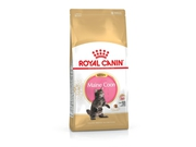 Karma Royal Canin Kitten Food Maine Coon 36 Dry Mix 10kg - 3182550770965