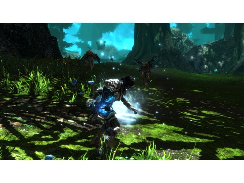 Kingdoms of Amalur: Re-Reckoning - K01599