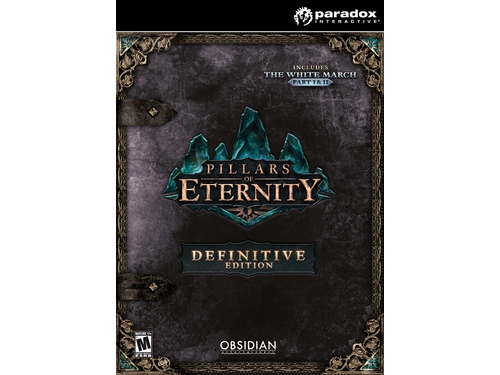 Gra PC Pillars of Eternity - Definitive - wersja cyfrowa