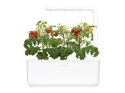 Click&Grow Int. doniczka Smart Garden 3 White