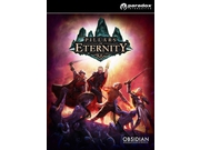 Gra PC Pillars of Eternity - Hero Edition wersja cyfrowa