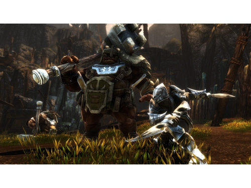 Kingdoms of Amalur: Re-Reckoning FATE Edition - K01600