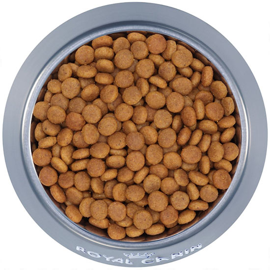 #Royal Canin FHN Ageing Steril +12 2 kg