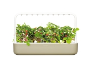 Click&Grow Int. doniczka Smart Garden 9 Beige