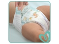 Pampers Pieluchy ABD Monthly Box 174