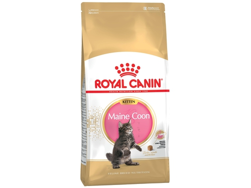 Karma Royal Canin FBN Kitten Maine Coon 36 2 kg