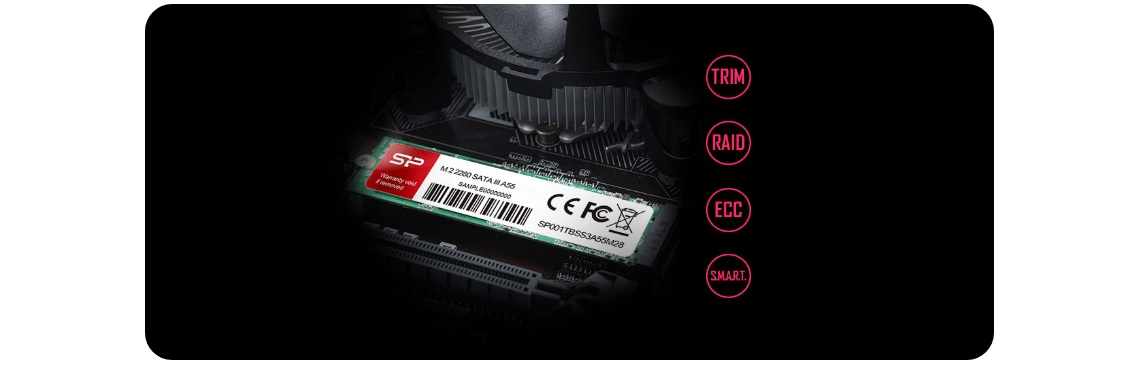 #SSD Silicon Power Ace A55 256GB M.2 (3D NAND)