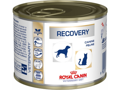 234170 - RECOVERY Dog/Cat 195 g