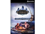 Gra PC Pillars of Eternity: Expansion wersja cyfrowa